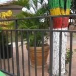 Agnes Jamaica 5