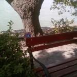 Miridiel Margareth Island 4